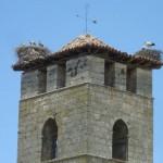 Campanario de la Abadía